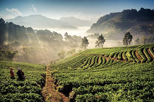 Berglandschaft Chiang Mai, Thailand