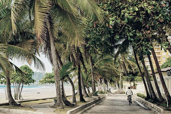 Mit Rad durch Palmen, Costa Rica
