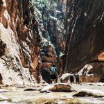 Schlucht im Zion Nationalpark, Utah. © Dex Ezekiel