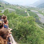 Aussicht über einen Weinbalkon auf das Tal