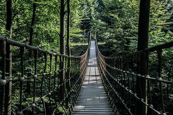 Hängebrücke vom Rothaarsteig, Rothaargebirge, Deutschland