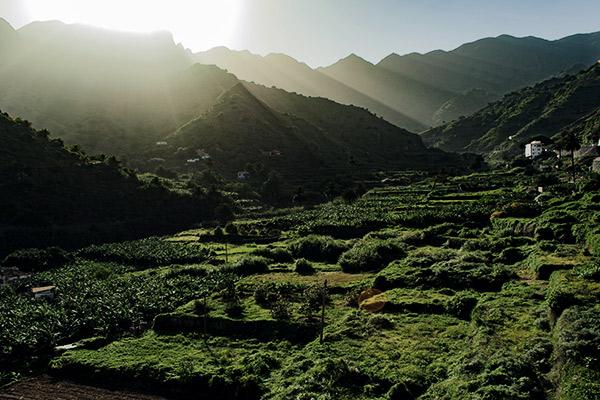 Tal von Hermigua auf La Gomera
