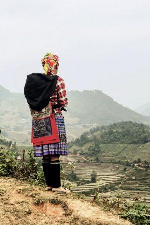 Hmong Frau Reisterrasse, Vietnam