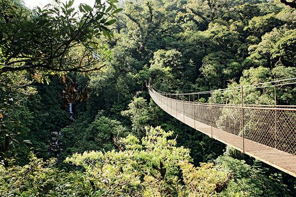 Hochland Boquete, Panama