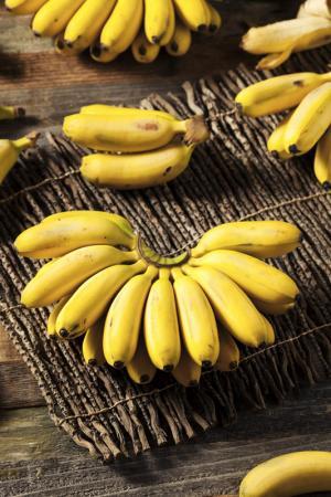 kleine, gelbe bananen auf holz