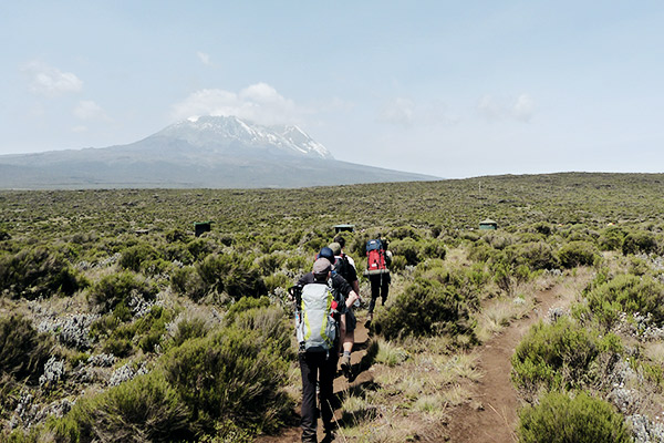 gruppe-lemosho-route-kilimanjaro