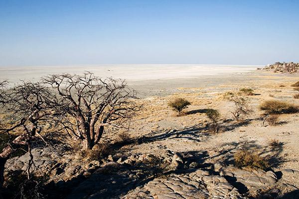 Makgadikgadi Salzpfanne, Botswana