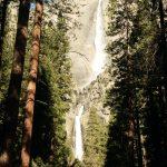 Blick auf einen Wasserfall durch Bäume hindurch, Yosemite Nationalpark. © Matthew Winslow