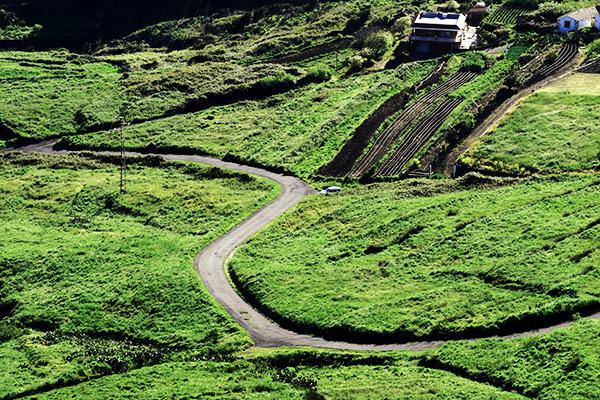 Terassenfelder im Teno Gebirge, Teneriffa