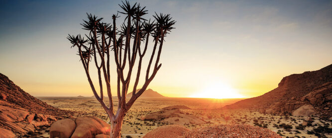 Wüstenlandschaft in Namibia