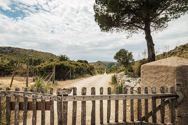Wanderweg in Parque de natural de Llevant, Mallorca
