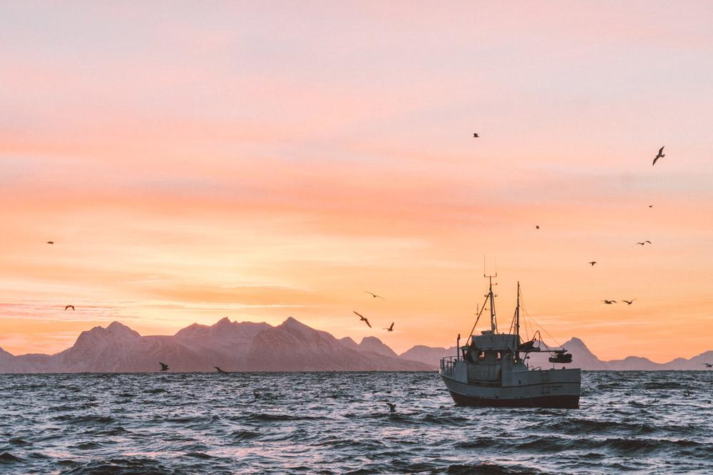 fischerboot, das aufs meer hinausfährt, berge und orange gefärbter himmel im hintergrund