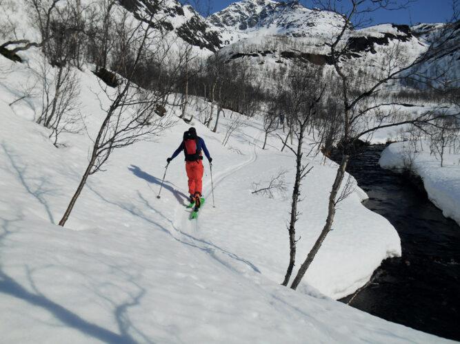 Skitourengeher von hinten, geht Pfad im Schnee entlang, einige karge Bäumchen, blauer Himmel