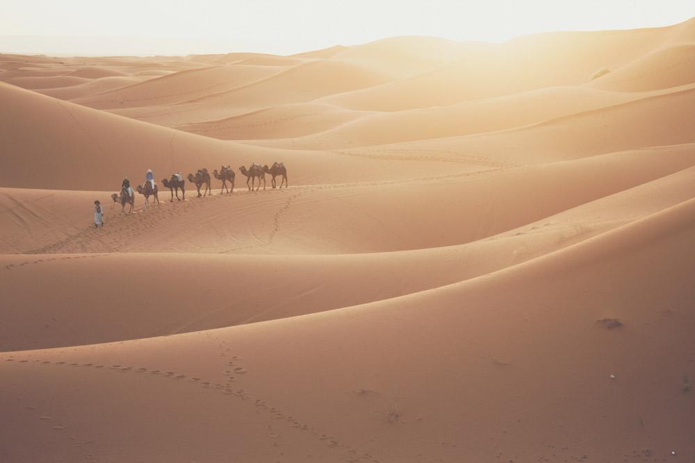 Kamelkarawane in Sandwüste zwischen Dünen