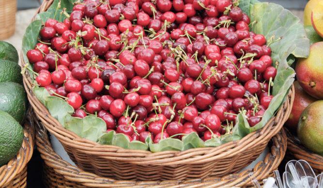 Ein Weidekorb mit vielen roten Kirschen