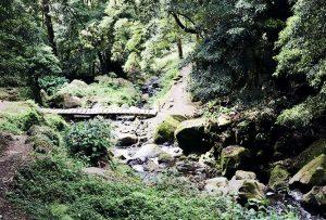 reisebericht-azoren-kratersee-ribeira-do-faial-da-terra-bruecke