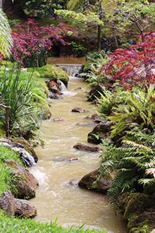 reisebericht-azoren-terra-nostra-garden-bach