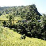 Reisterrassen unter blauem Himmel, Nepal