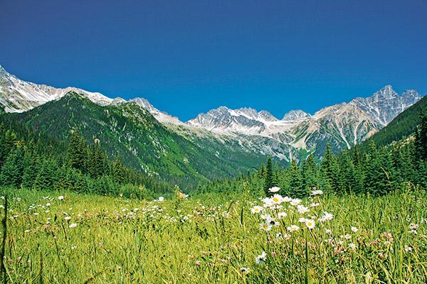 Bergwelt im Glacier Nationalpark, Kanada