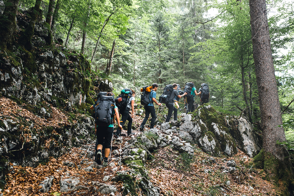 Gruppe Wanderer im Wald