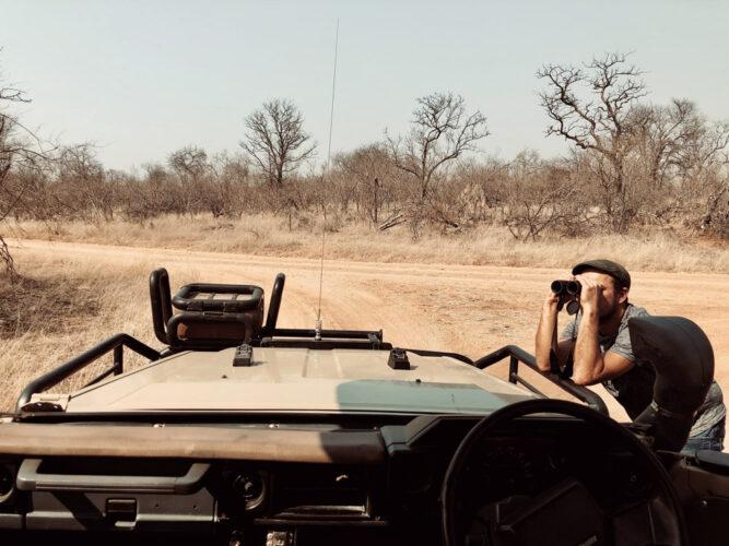 Mann mit Fernglas, Safari Kruger Nationalpark