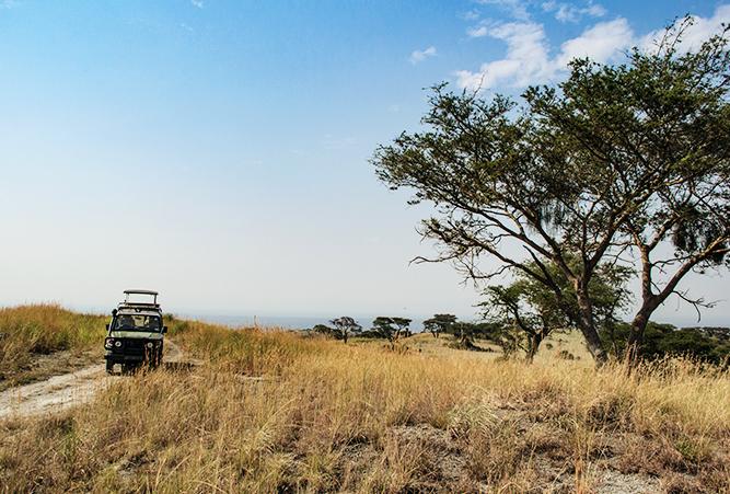 safari-queen-elizabeth-nationalpark-uganda