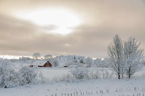 Huette im Schnee, Schweden
