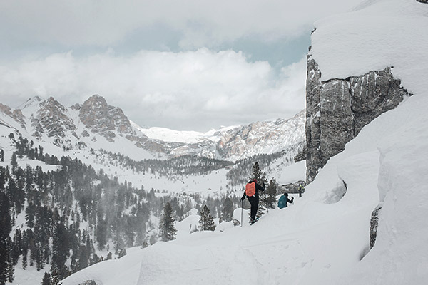 Waldgrenze Fanesalpe, Dolomiten