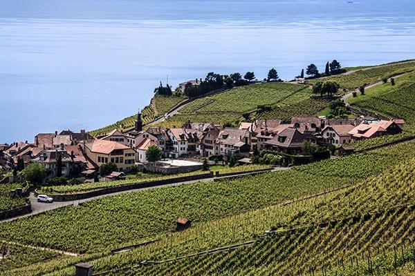Weinanbaugebiete am Genfer See