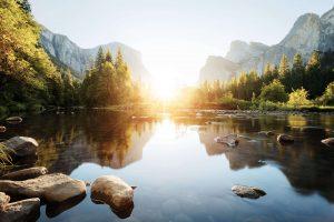 Zauberhafter Sonnenuntergang, durch Bäume hindurch, Yosemite Nationalpark. © Shutterstock