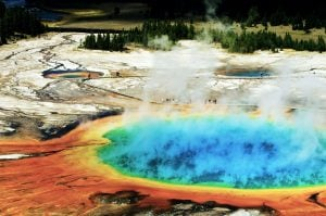 Ein typisches Bild im Yellowstone Nationalpark. © Shutterstock