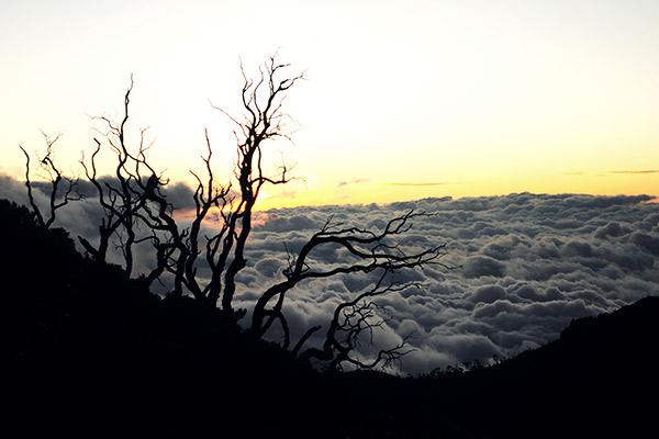 Sonnenaufgang am Cerro Chirripo, Costa Rica
