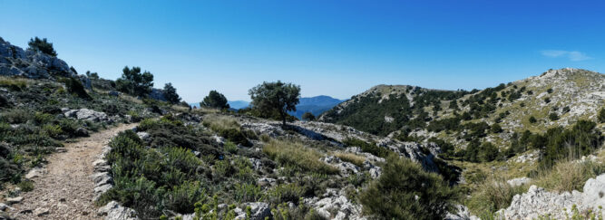 Schmaler Bergpfad in leicht gebirgiger Umgebung, blauer Himmel