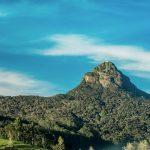 Grün bewachsene Erhebung in der Landschaft