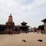 Hunde liegen vor Tempel, Bhaktapur, Nepal