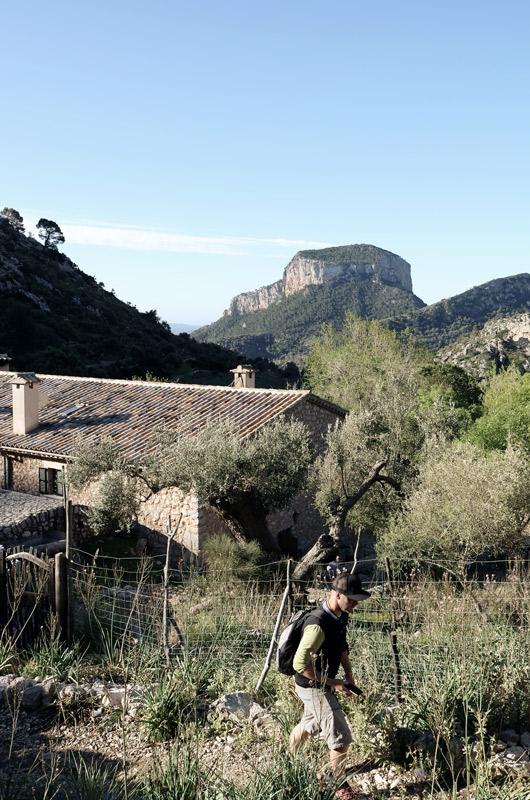 Wanderer geht nach rechts an einem Zaun entlang, im Hintergrund eine Hütte inmitten von Olivenbäumen
