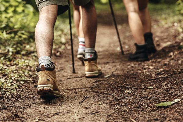 Füße von Wanderern auf Waldpfad