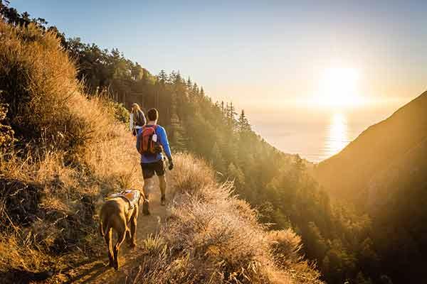 Wandern mit Hund bei Sonnenuntergang