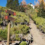 Schild Pico Ruivo, Madeira