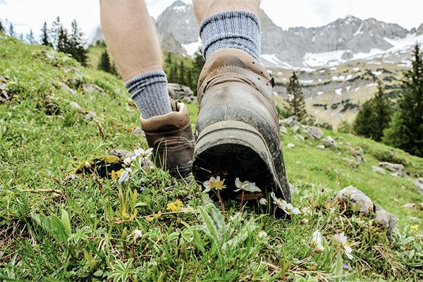 Wanderschuhe mit Blumen am Berg