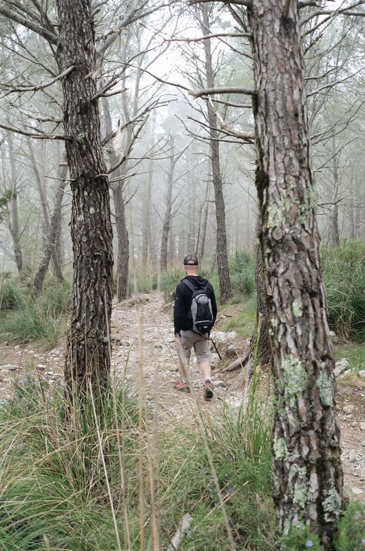 Wanderer in einem nebeligen Wald