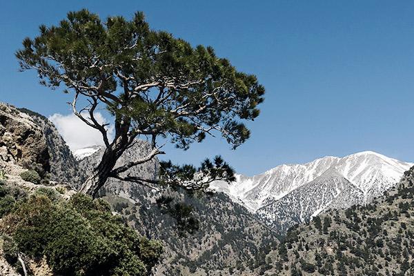 Weiße Berge, Kreta