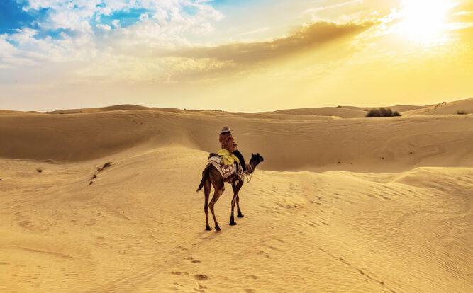 Wüstensafari in der Thar Wüste in Rajasthan, Indien