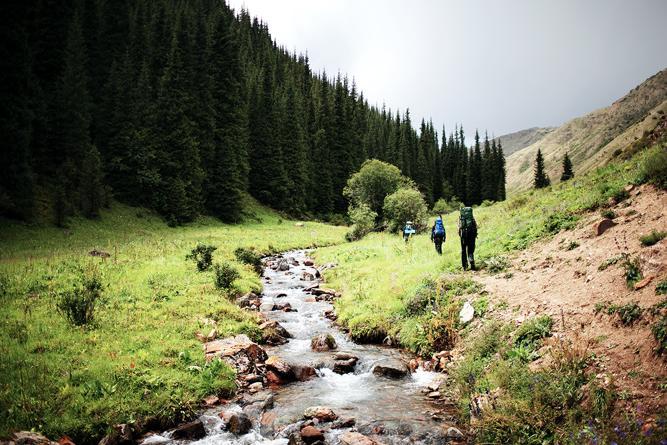 Talwärts fließender Bach neben einem Wald, an welchem drei Wanderer entlang gehen